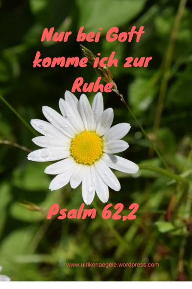 Nur bei Gott komme ich zur Ruhe Psalm 62,2