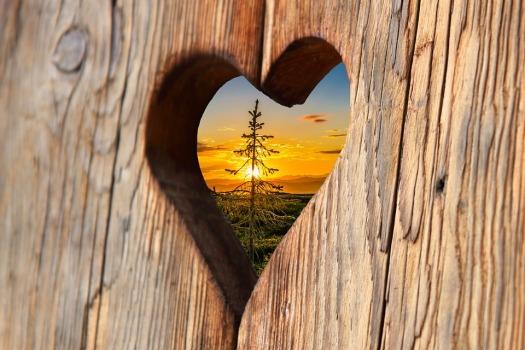 heart-2041866_960_720