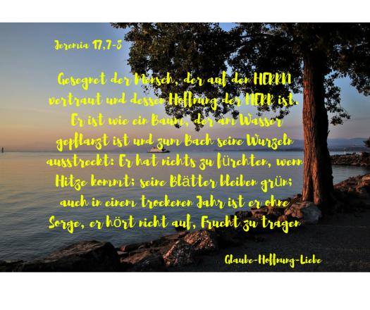 Gesegnet der Mensch, der auf den HERRN vertraut und dessen Hoffnung der HERR ist.8 Er ist wie ein Baum, der am Wasser gepflanzt ist und zum Bach seine Wurzeln ausstreckt_ Er hat nichts z