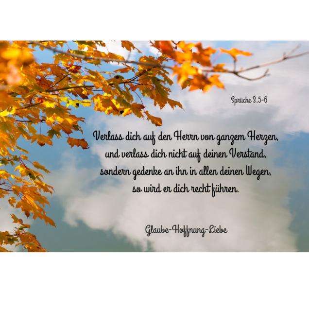 Verlass dich auf den Herrn von ganzem Herzen,und verlass dich nicht auf deinen Verstand,sondern gedenke an ihn in allen deinen Wegen,so wird er dich recht führen.